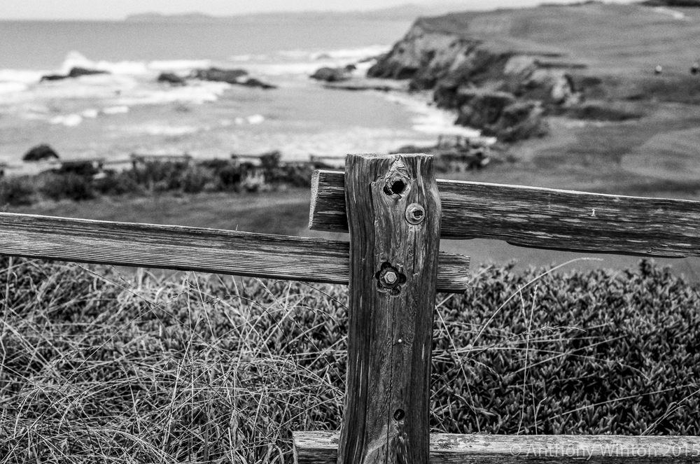 Fence, Half Moon Bay