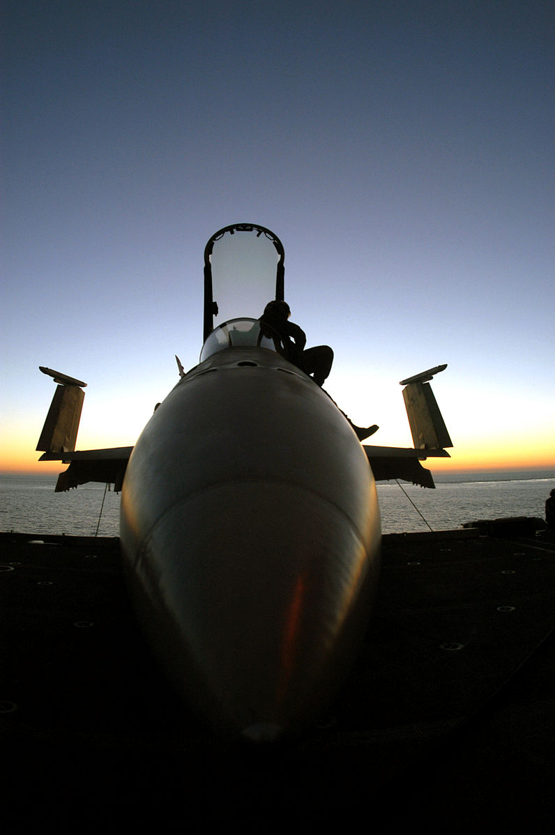 US_Navy_021121-N-0233J-006_A_plane_captain_finishes_his_pre-flight_inspection_of_an_F-A-18C_Hornet.jpg