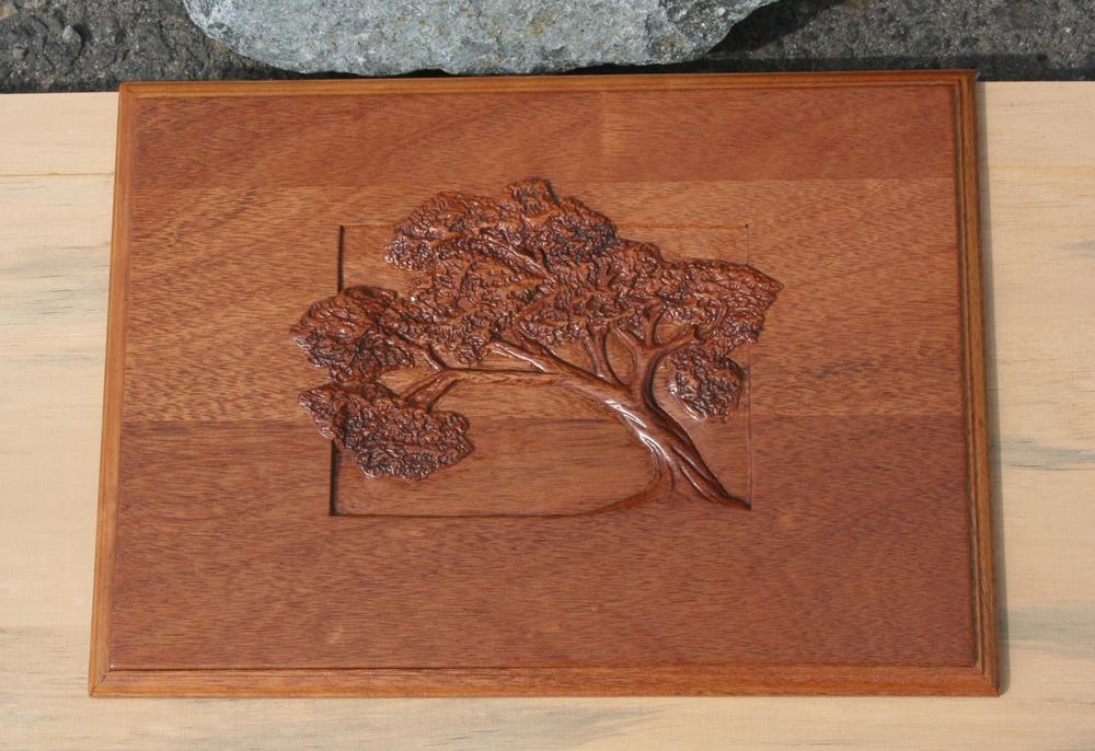 Single-Tree-Box-3.jpg