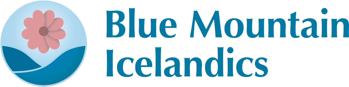 Blue Mountain Icelandics