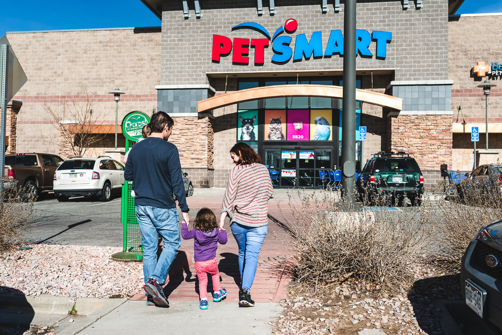 petstore / denver family photographer /