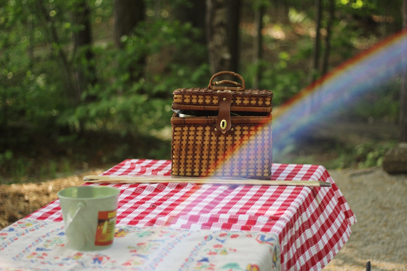 FAMILY PICNIC - WE PROVIDE ALL THE SUPPLIES & THE VIEW