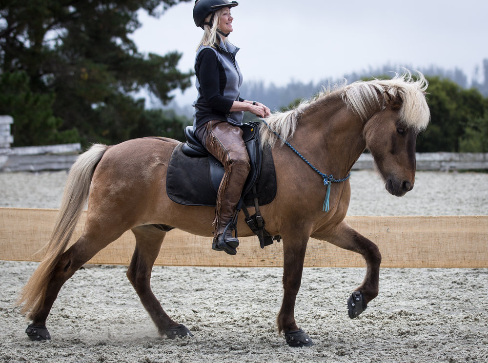 Joyful Riding