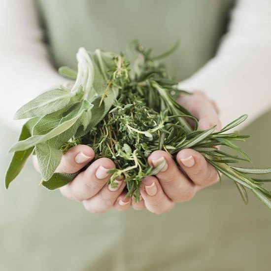 With savoury and aromatic properties to enhance the flavour or garnish any dish, herbs give that extra touch of fresh to our dishes 🍃  #mediterraneasydney
