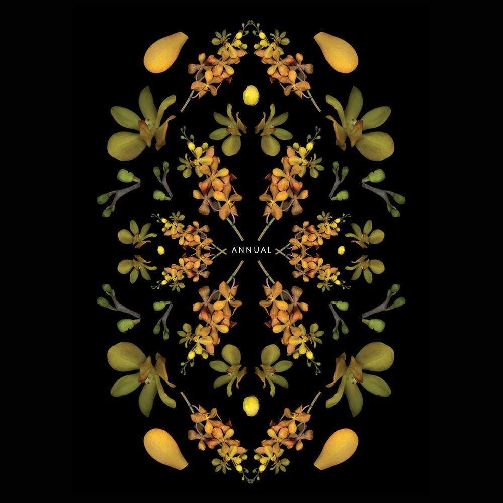 Botanical Pattern Series