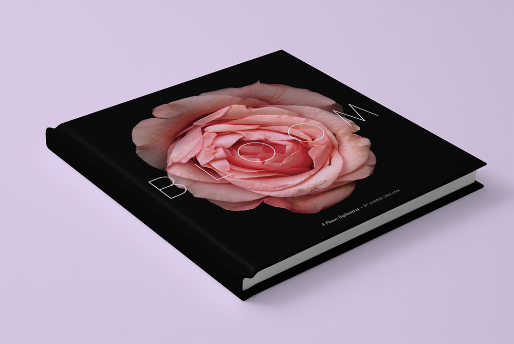 Bloom Book