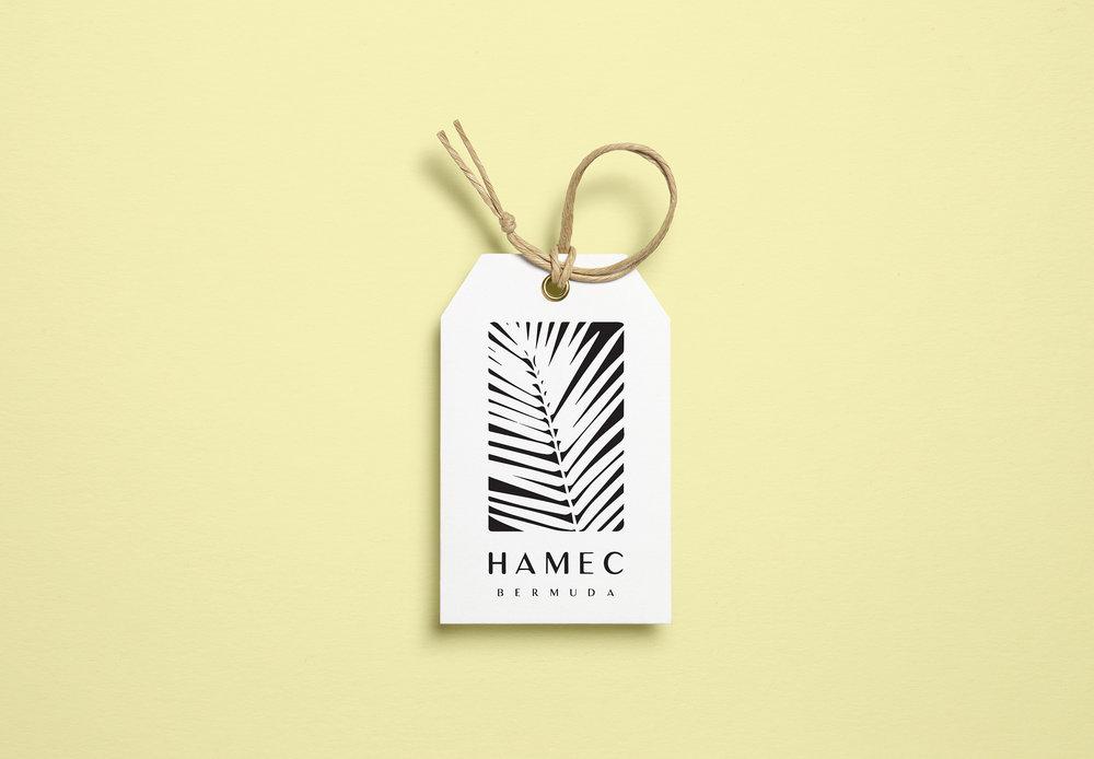 hamec2.jpg
