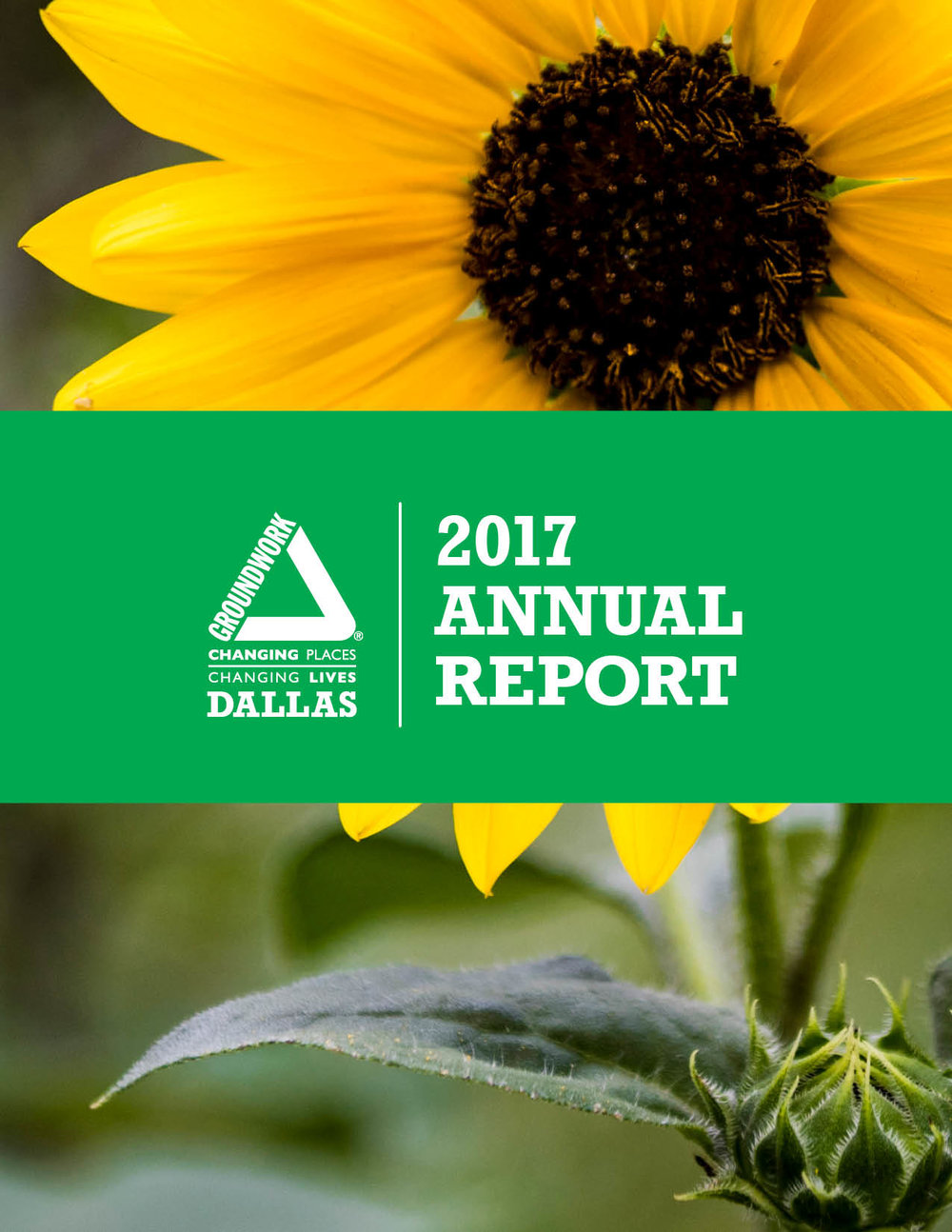 GWD_2017_Annual_Report_Cover.jpg