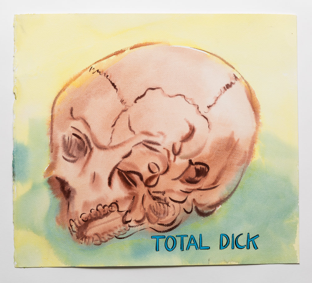 Total Dick   2015 watercolor, gouache and ink on paper 16x18""