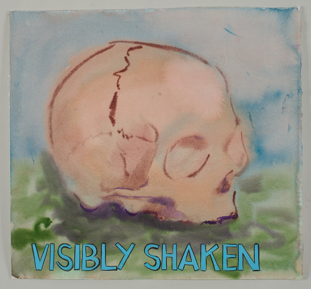 Visibly Shaken  2016 watercolor, gouache and ink on paper 15x16""