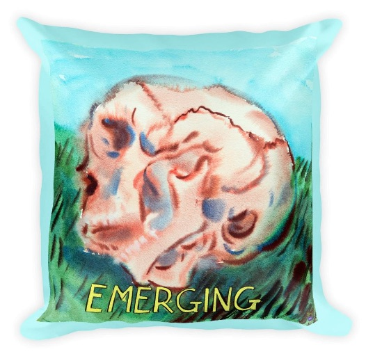 Pillow_Emerging copy.jpg