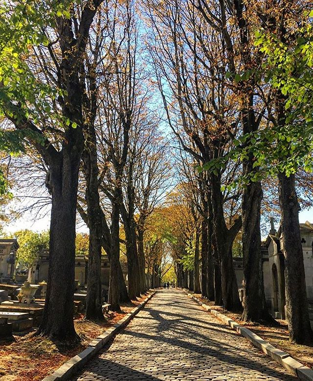 Loving this fall photo in one of Paris' most famous cemeteries, Pere-Lachaise 🍂🍃🍁 Merci Eleanor @killerfemme for sharing your beautiful visit to the City of Lights! ✨ And your stroll through the coolest cemetery (where Jim Morrison, Chopin, Moliere, Edith Piaf and Oscar Wilde are buried 💀!) ✨ * #atotaltrip #perelachaise #paris #france #autumn