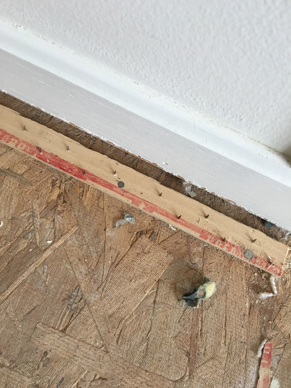 Goodbye Green Carpet Hello Original Hardwood Floors likewise Mon Carpet Roll Widths in addition Wood Floor Padding as well Staircase Makeover also How To Remove Carpet Pad Glue From Concrete Floor. on removing old carpet and padding
