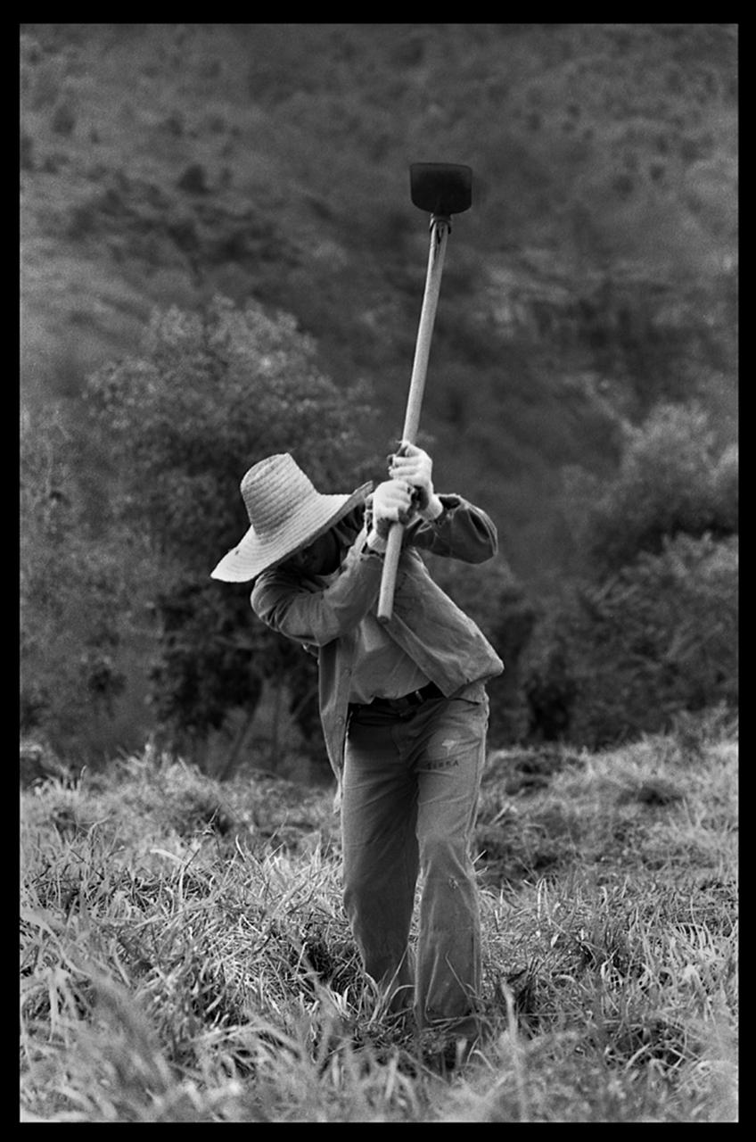Fieldwork. Eastern Brazil.