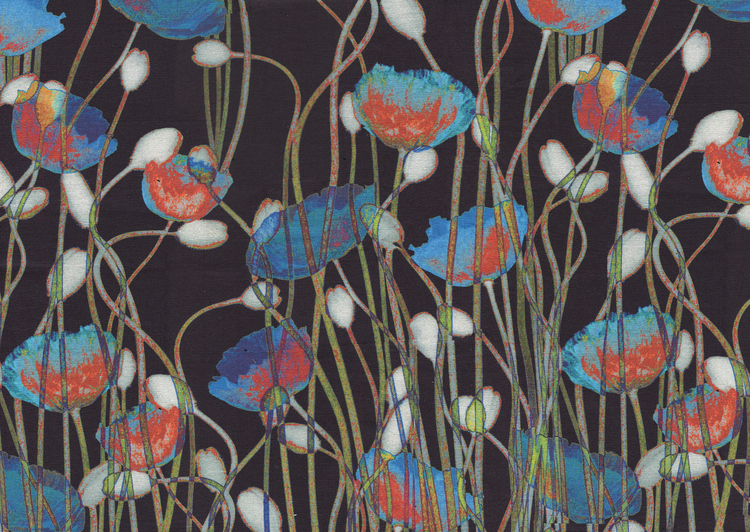 Poppies V01