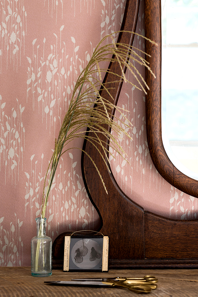 Phragmites Rose Gold Wallpaper