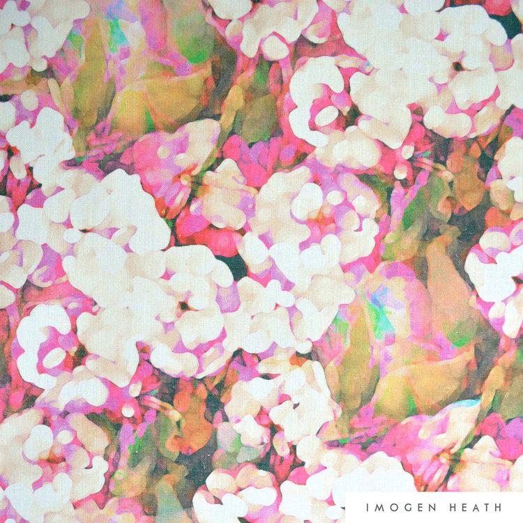 Rosa - Pink