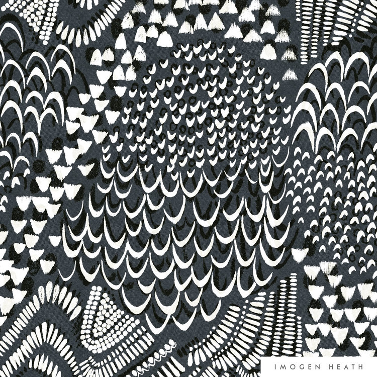 Starling - Grey