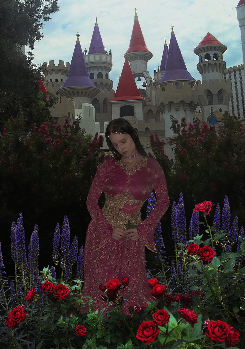Created with Adobe Photoshop a composite of  seven images to create this scene. A princess admires the beautiful flowers in her garden. In the background her castle stands magnificantly remindng her of her blessings and abundance.