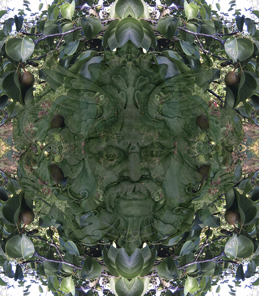 Created with Adobe Photoshop. A composite of two images create greenman in this mirror image nearly symmetrical piece.