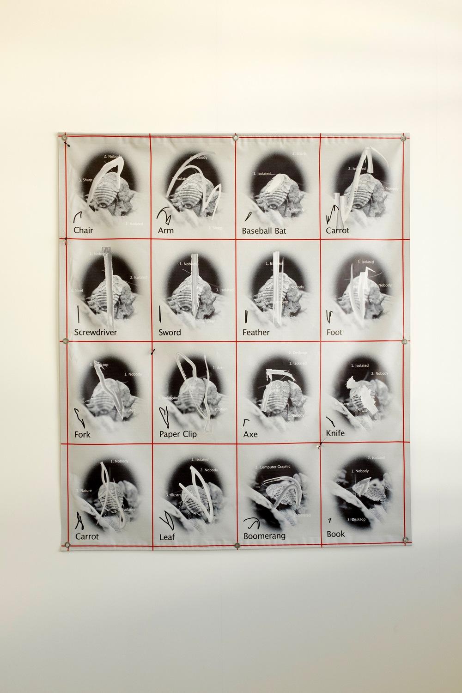 Adriana Ramić, Printed vinyl banner, Clarifai API demo, sketch recognition demo, ant and mosquito pushpins
