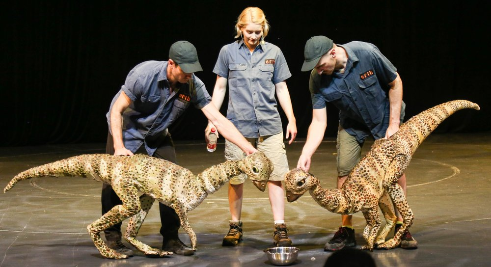 Mathias and Steven Peck operating the two Leaellynasaura in the China Tour 2018.