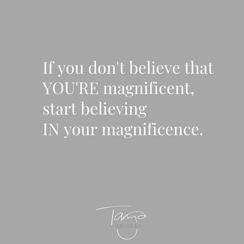 If you don't believe YOU'RE magnificent.png