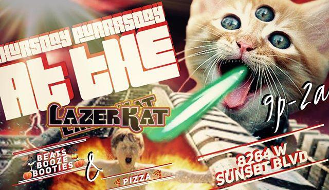 Thursday Purrrsday at the Lazer Kat #pizza #housemusic #housemusicallnightlong #housemusiclovers
