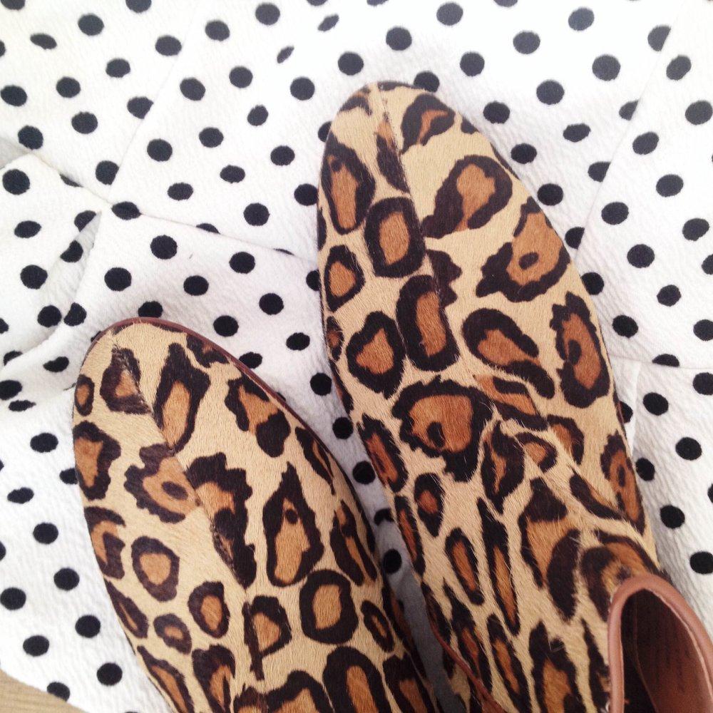 leopardanddots.jpg