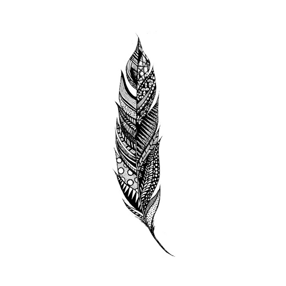 feather4600x200.jpg