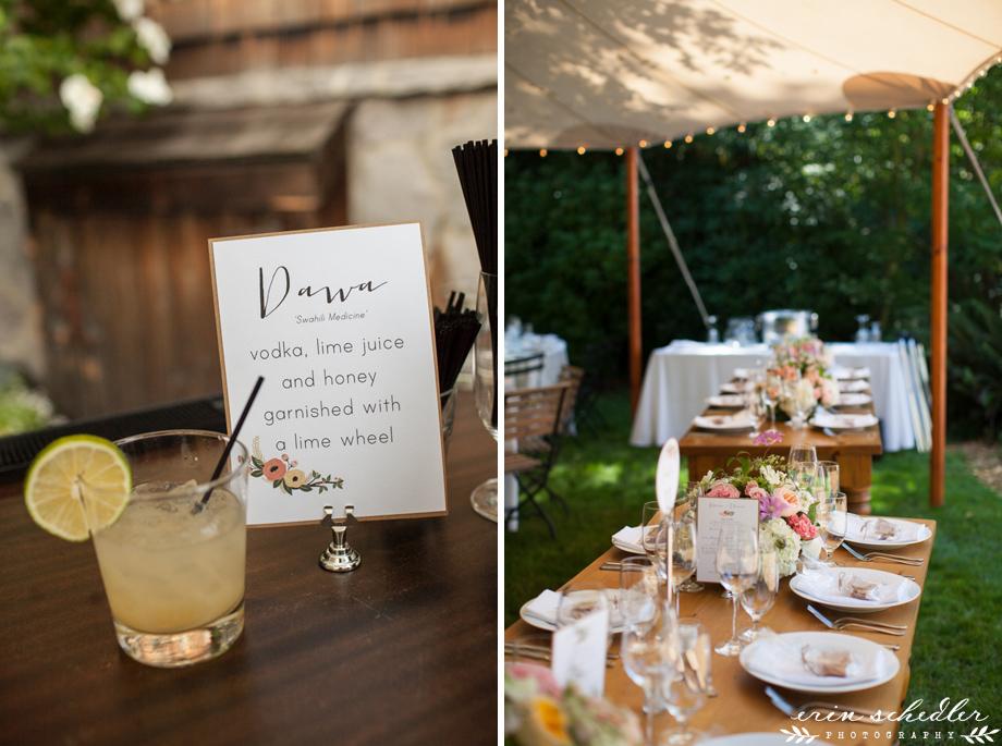 bella_luna_farms_wedding067