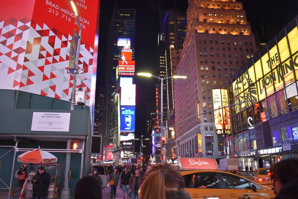 Times Square, which we didn't love but had to walk through a million times.