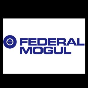 federalMogul.png