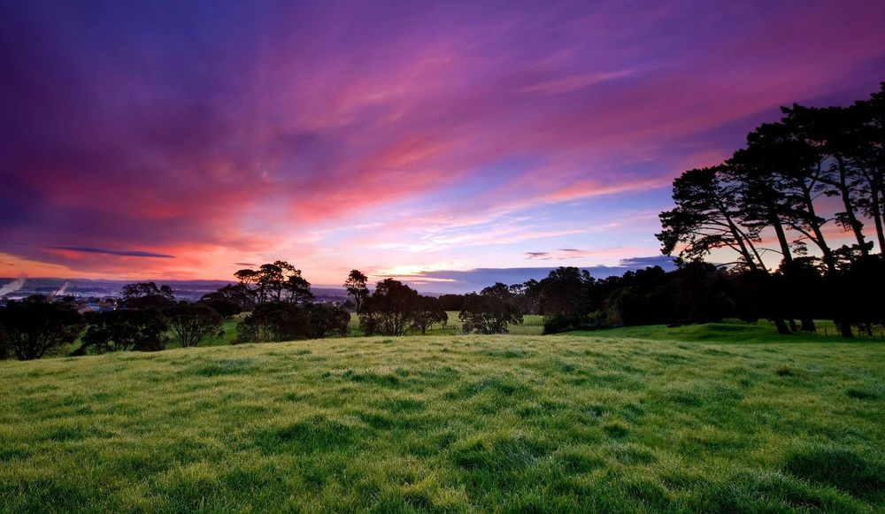 green_field_lanscape_with_sunset_beautiful_sky-other.jpg