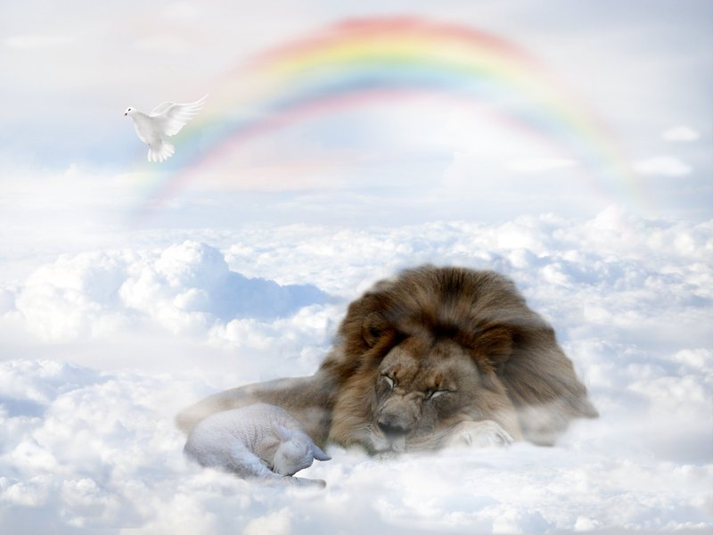 Good news: we got confirmation that Aslan will be in heaven.