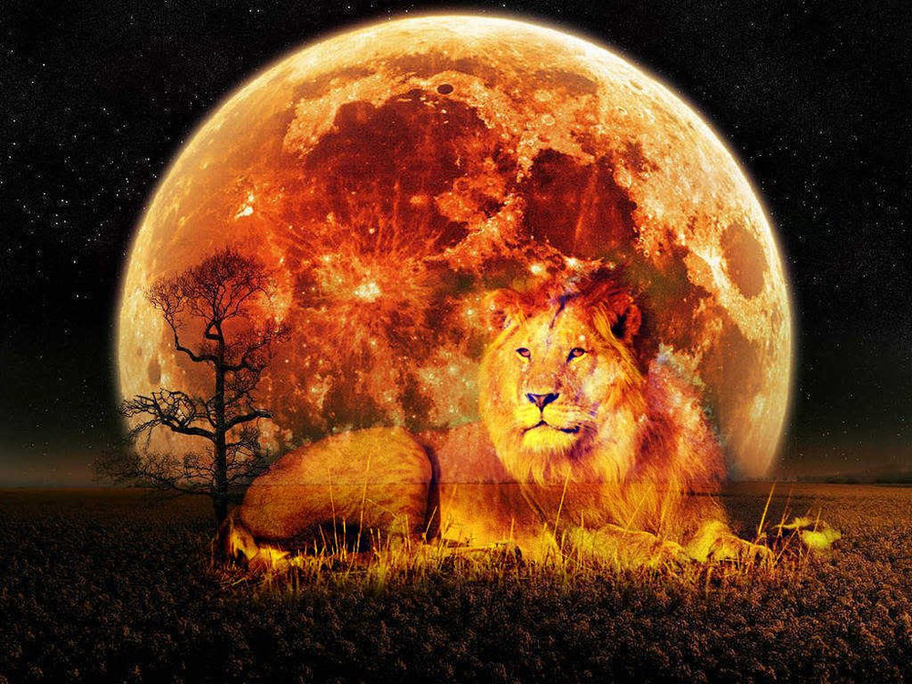 Image from:    https://gostica.com/astrology/the-february-10th-lunar-full-moon-eclipse-in-leo-a-spiritual-perspective/