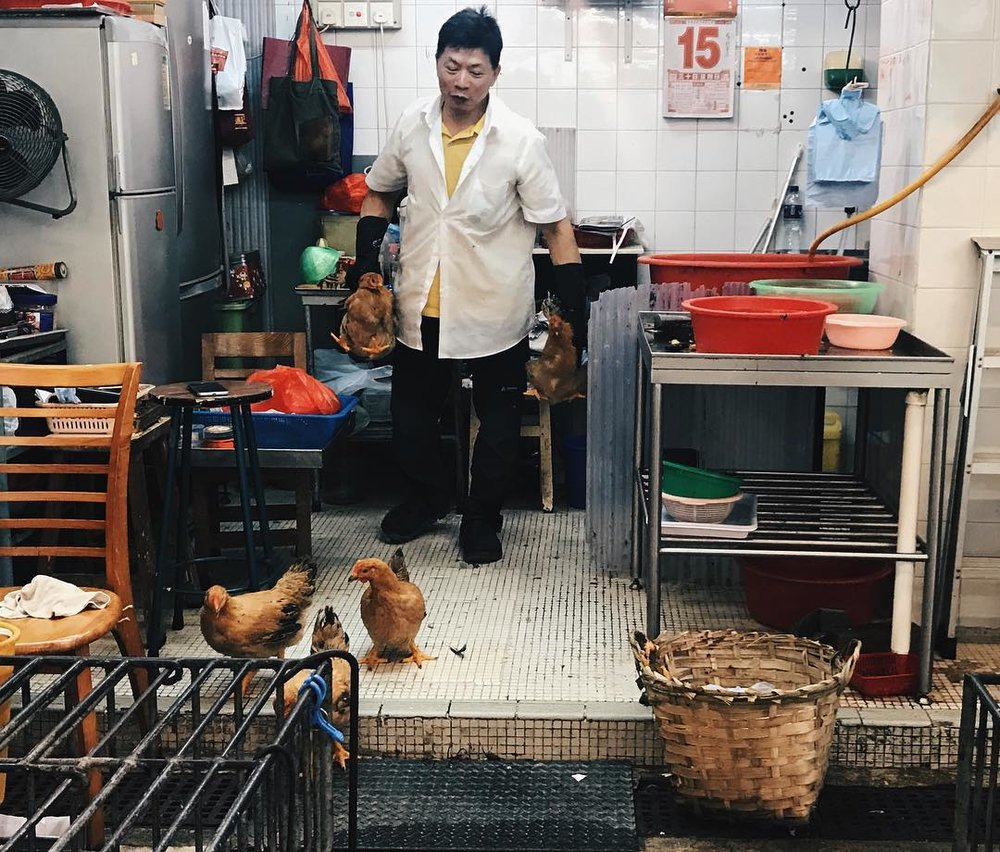 We might even get to see chickens roaming freely in a livestock shop in the market if we're in luck!