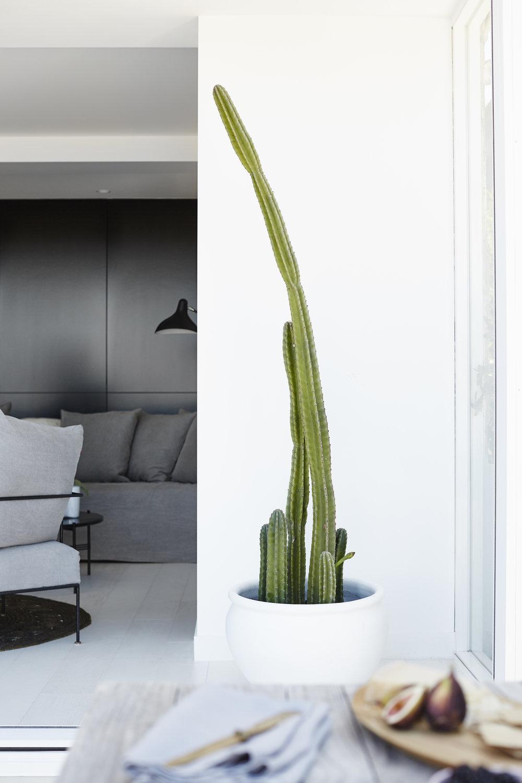 KAJA_Interior Design_Tamarama Beach House_369.jpg
