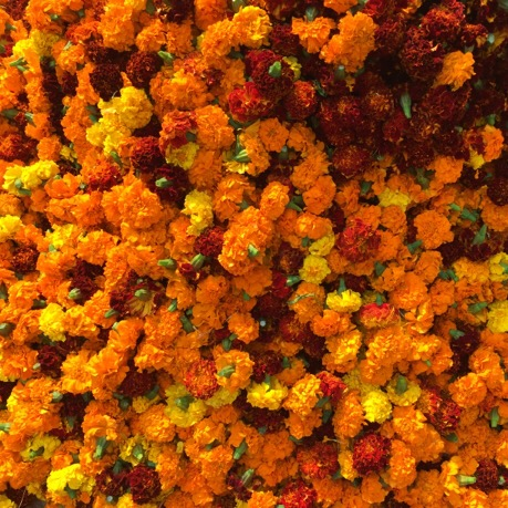 Marigolds for sale in Delhi's Chandni Chowk market