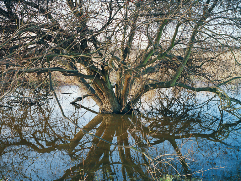 From the series  Along the Hackney Canal