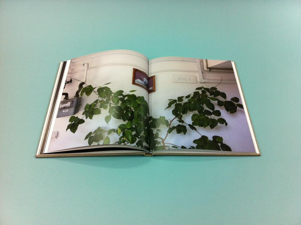 Still Home  photobook
