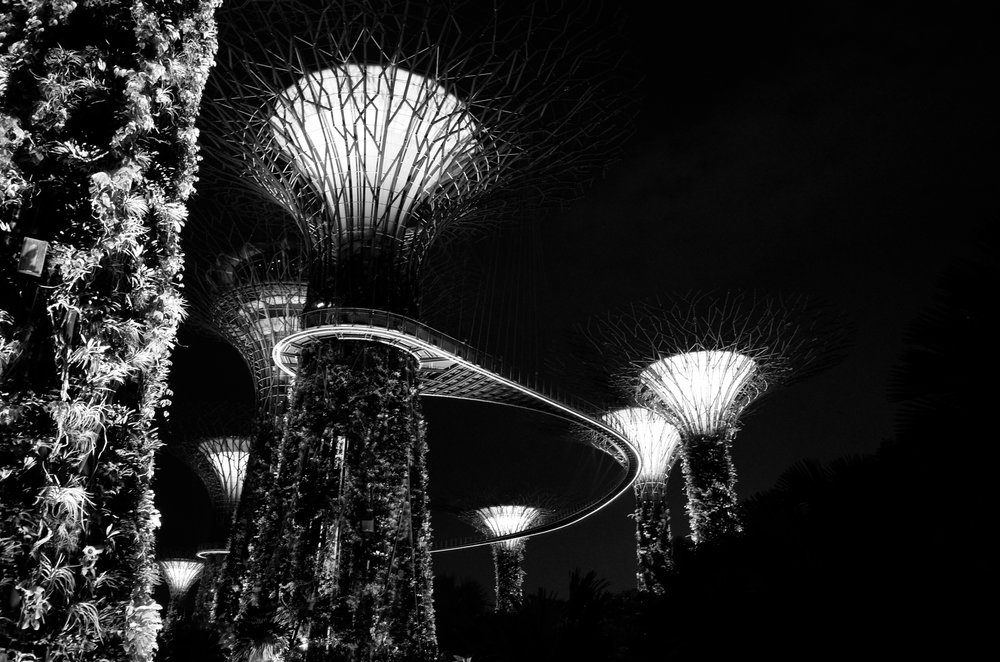Images of Singapore from an ongoing untitled project by  Darren O'Brien