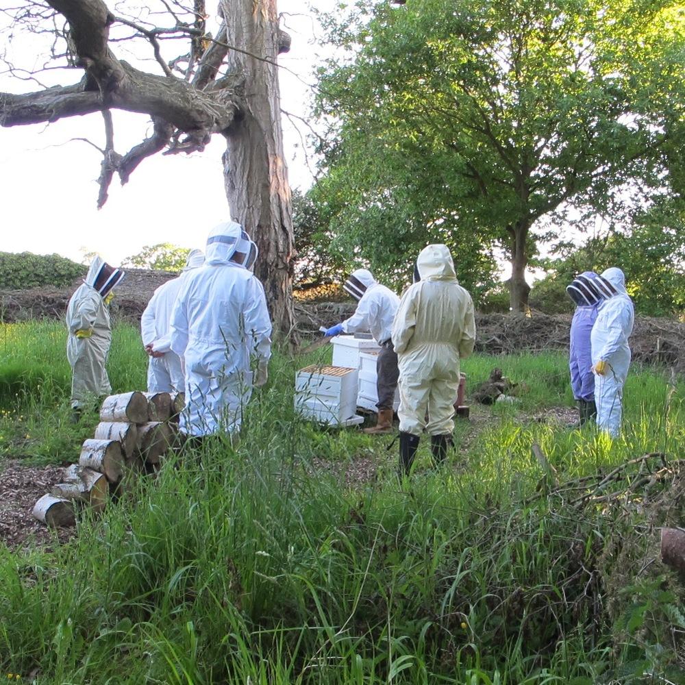 MDBKA  Beekeepers visit sq.jpg