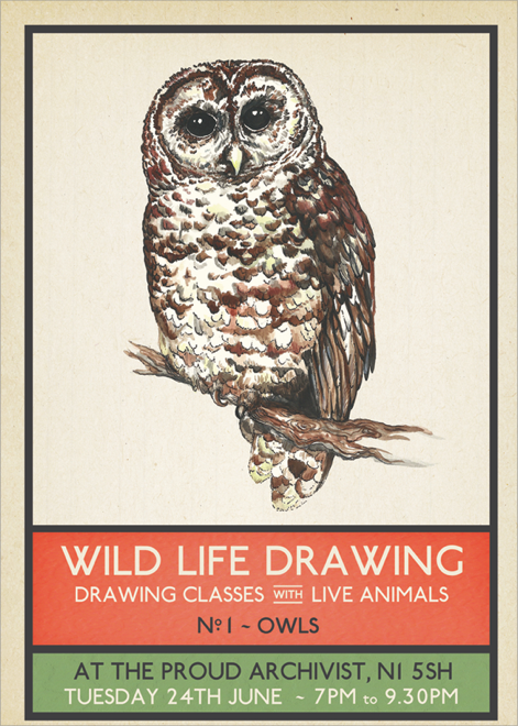 Inspiration: Wildlife drawing classes happening regularly at this very venue. Another way to engage with nature - the aim is to inspire a sense of appreciation and understanding for the animals and their conservation.