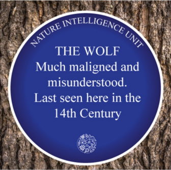 Idea: Blue plaques linking the nature of the past with places of the present.