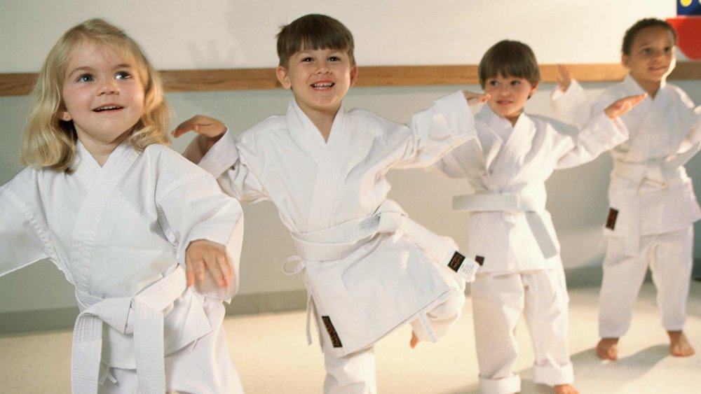 Our Tiny Warriors program is unique because on top of the typical benefits associated with martial arts like improved confidence, coordination, focus, and discipline, we also incorporate character education into each and every class!  Each testing cycle your child will be working on one trait such as discipline, respect, confidence, communication, etc, in class.  Additionally, they will also be working at home and at school to earn achievements in class.       This approach is unique, so rather than just learning punching and kicking, your child will be learning skills that will make them more successful at home, at school, and in their lives.