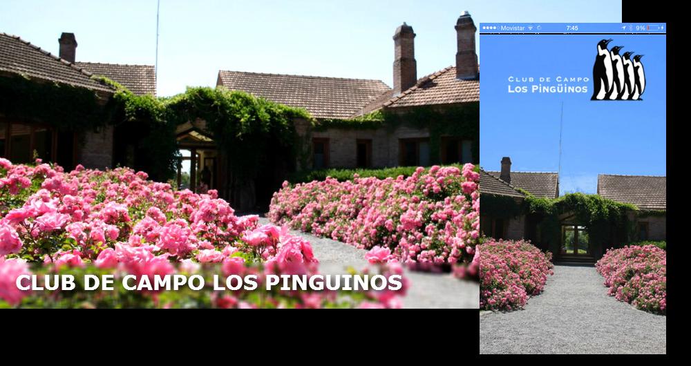 Ejemplo del sitio web para socios del Club Los Pinguinos con su app móvil