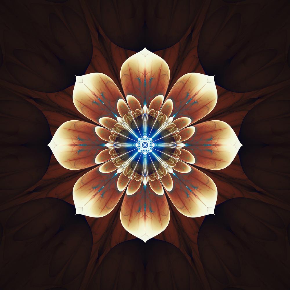 Fractality [#78] - Deku Flower