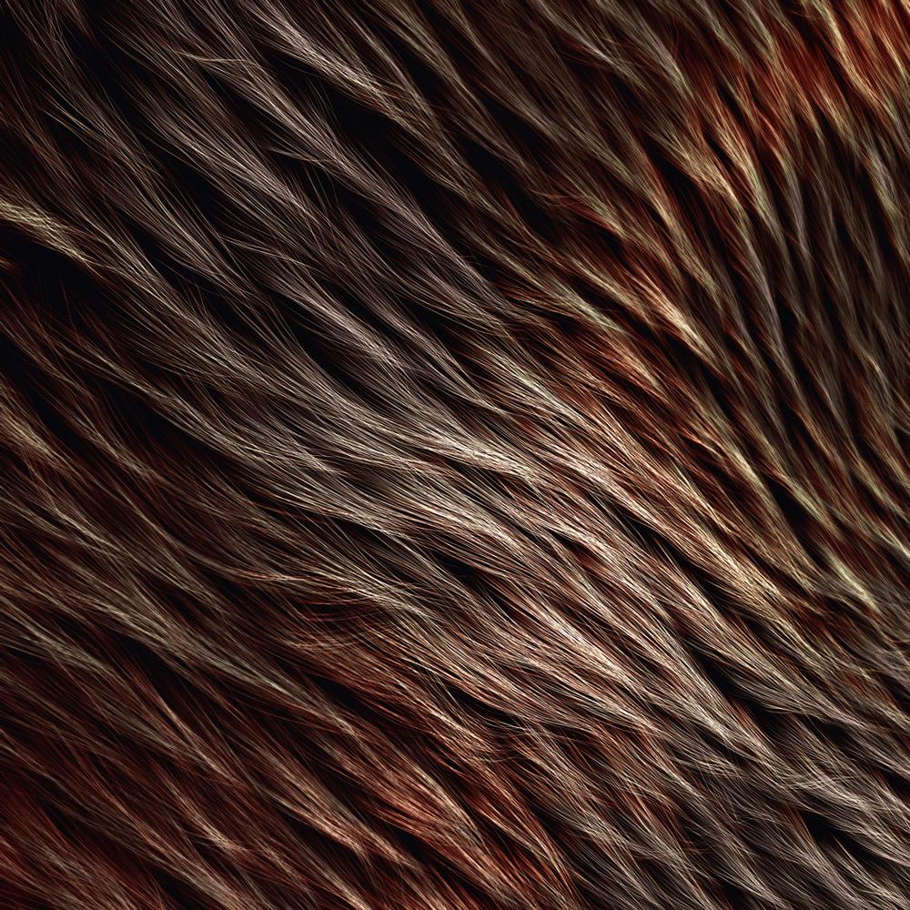 [24-07-16] - Fur.jpg