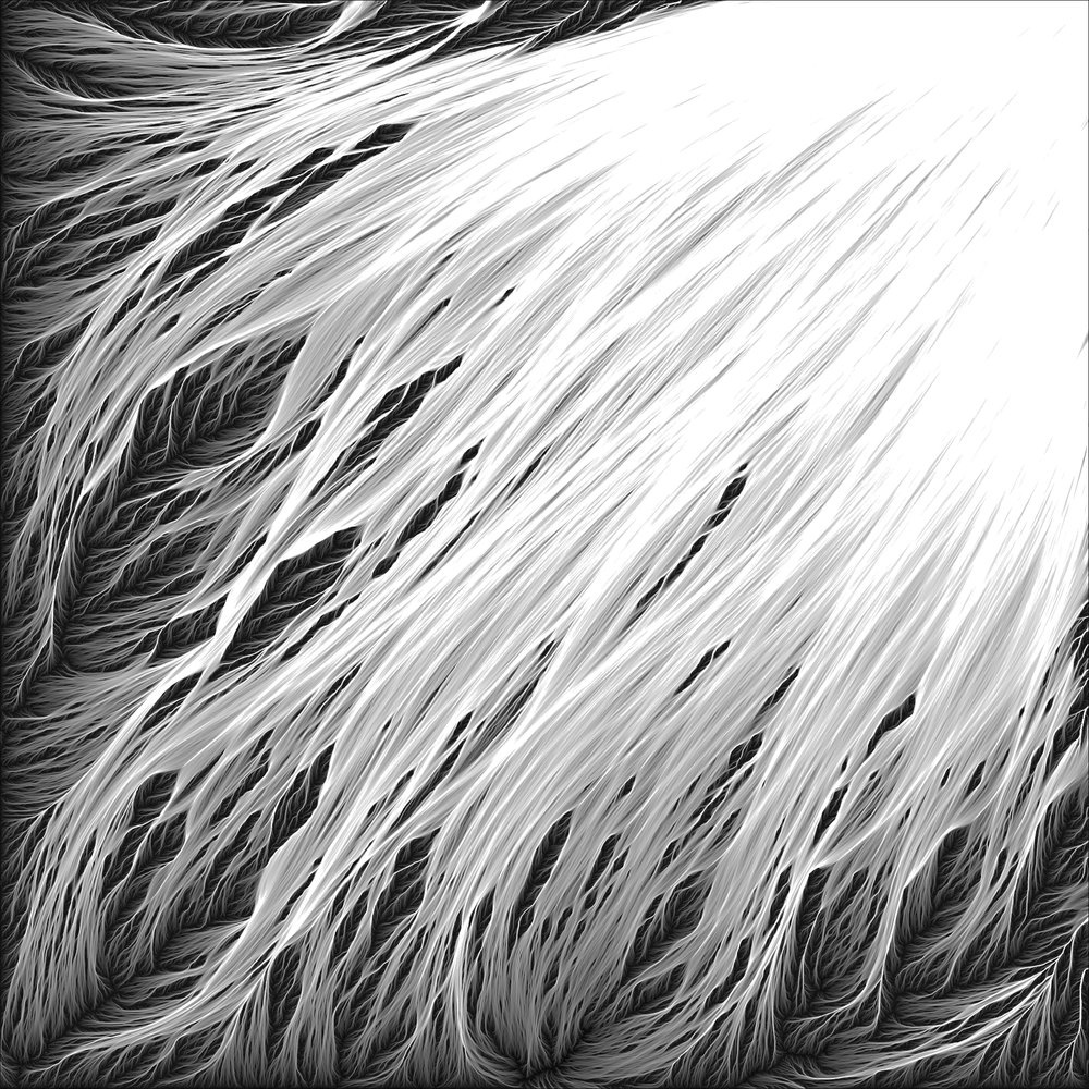 Retina-BM-014.jpg